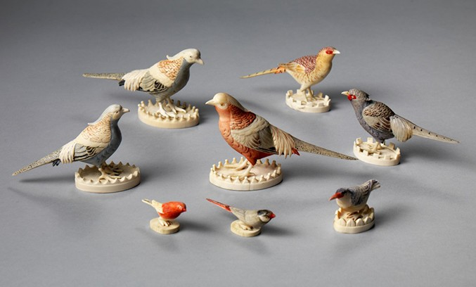 bird-set-2bwhite677